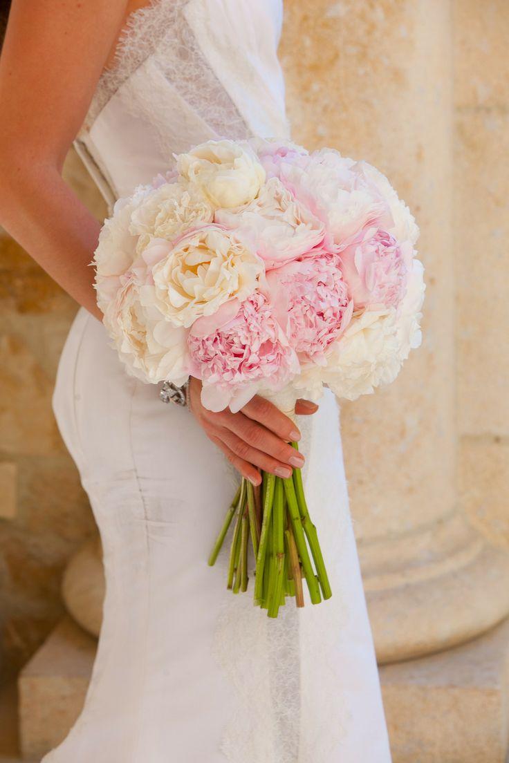 Peonias blancas y rosas
